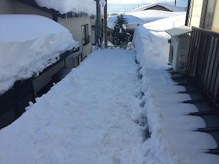 今日の除雪状況