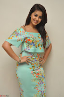 Nikki Galrani in Cute Dress Dress At Marakathamani Success Meet ~  Exclusive 015.JPG