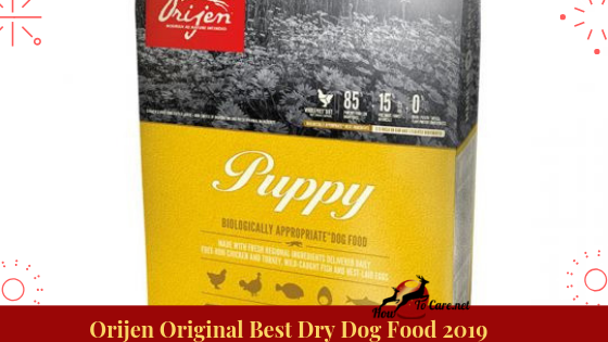 Taking a gander at the fixing rundown can unmistakably explain why. Made out of Kentucky, Orijen Original Dry Dog Food is defined with the most astounding nature of crisp entire creature fixings.