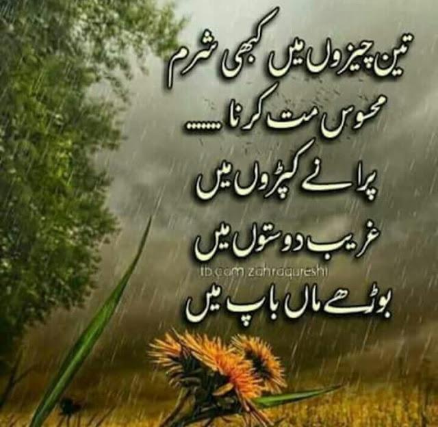 Best Inspiring Quotes in Urdu images - 3 cheezoo main kabhi sharm mat kero
