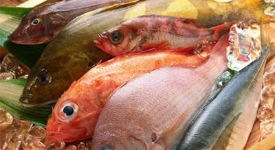 Mulai Sekarang,Hindarilah Makan Kepala Ikan,Tau Kenapa?Baca Selengkapnya...