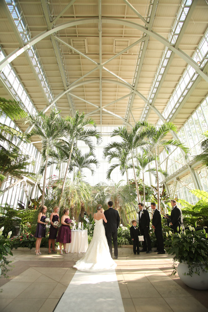 Artisan Photos Joe And Nan Piper Palm House April