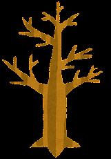 いろいろな木のイラスト「枯れ木」