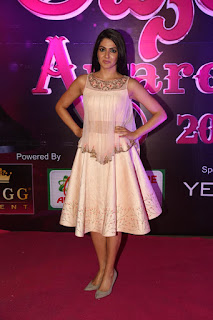 Sakshi Chaudhary looks stunning in sleeveless Transparent Ghagra Choli at Apsara Awards 2016