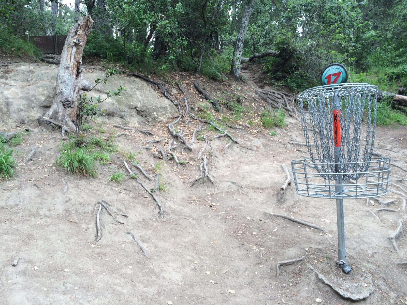 figure 2 wood 2016 hole 17 basket purisima formation on left
