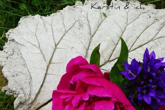 Betonschalen Rhabarber Blätter