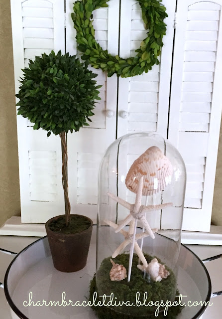 How to Make A Pottery Barn-Inspired Shell Cloche