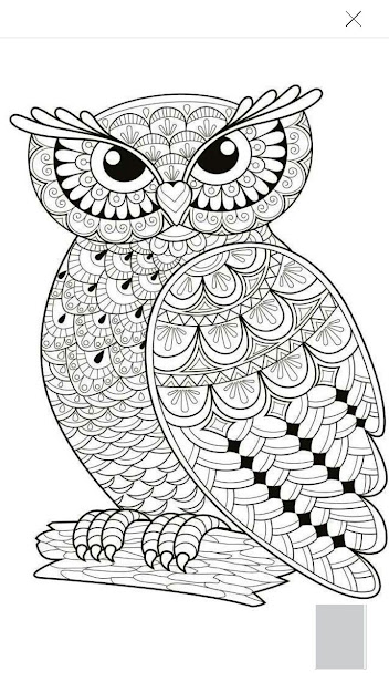Adult Antistress Coloring Page Black And White Hand Drawn Illustration  For Coloring Book  Stock Vector From The Largest Library Of Royaltyfree  Images