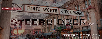 STEERBIDDER.COM