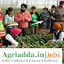 Associate/Assistant Professor Recruitment Agriculture/Horticulture/Forestry/Veterinary/Agri. Engineering
