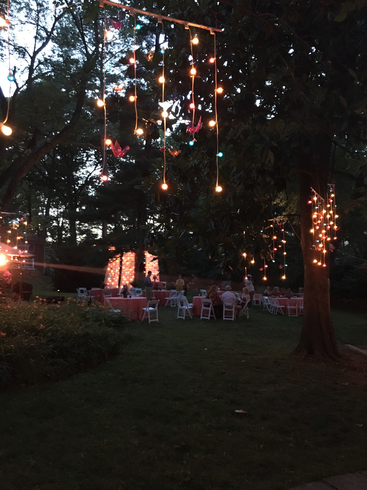 wedding reception in your own backyard northern va dc and md