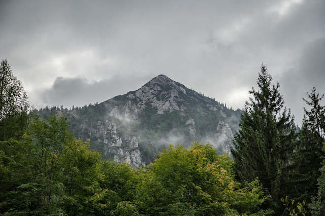 Rauschberg Rundtour Ruhpolding  Wandern Chiemgau 03