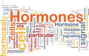 pengertian hormon merupakan suatu zat kimia yang dihasilkan oleh organ Pengertian Hormon dan Fungsi Hormon, Lengkap!