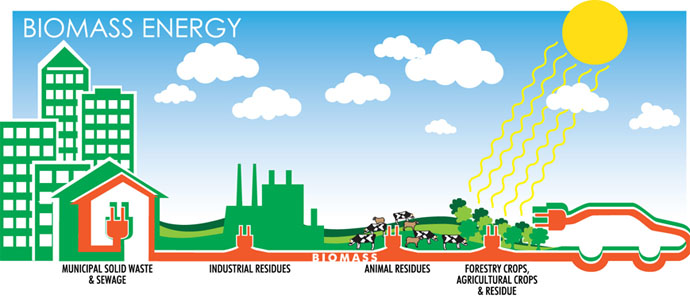 Skema Energi Biomassa