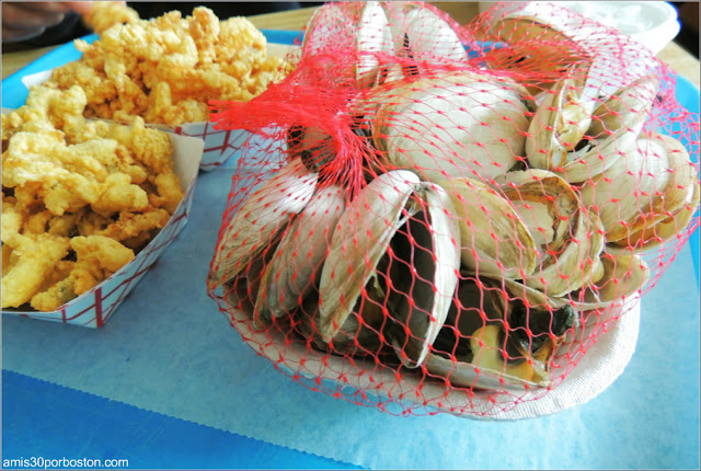 Woodman's of Essex: Clam Strips & Fried Clams & Steamed Clams