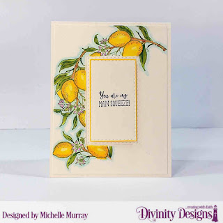 Divinity Designs Stamps: Lemon Branch, Custom  Dies: Double Stitched Rectangles, Paper Collection:  Birthday Brights