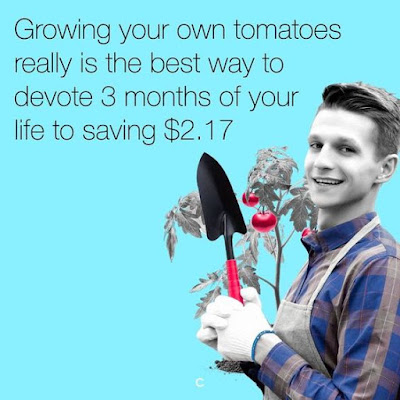 garden funny, gardening comic, garden joke, tomatoes 2.17, growing tomatoes, planting tomatoes