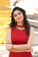 Telugu Actress Zahida Sam Latest Pos in Red Gown at RF Films New Movie Opening  0070.JPG