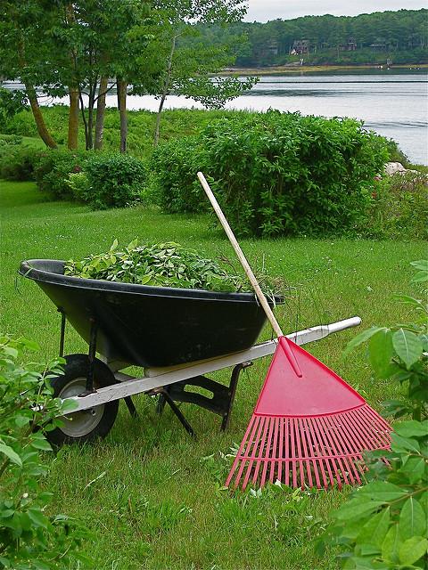 Mes travaux d co les bons outils pour entretenir son gazon for Outils de jardinage en p