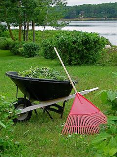 Outils de jardinage pour le gazon
