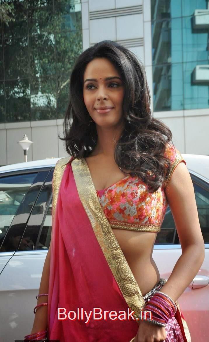 Mallika Sherawat Hot Hd Images In Choli From Dirty