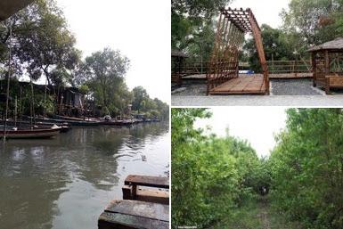 Rute Lokasi Wisata Mangrove Gunung Anyar dan Tiket Masuk