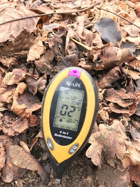 aktuelle Bodentemperatur im Gemüsebeet (c) by Joachim Wenk