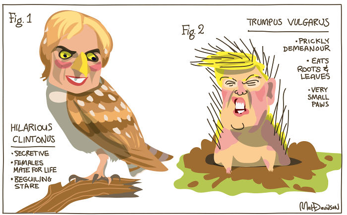 15+ Cartoonists Around The World Illustrate How They Feel About Trump Becoming President - Trumpus Vulgarus