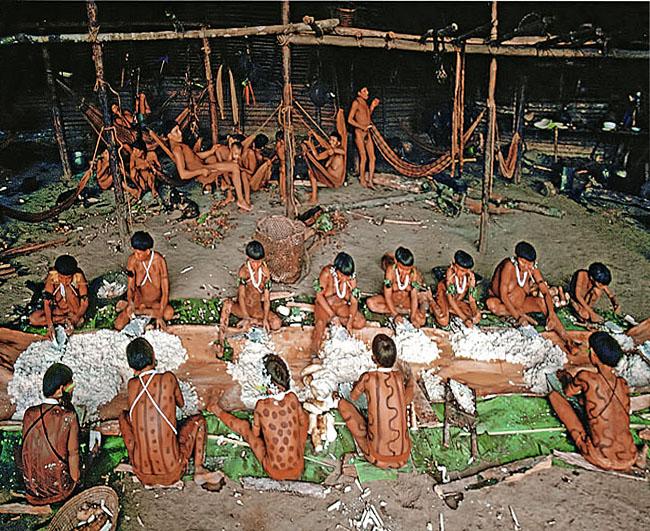 Fascinating Humanity: Yanomami Social Life