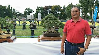 Ratusan Pohon Bonsai Dipamerkan dan Dilombakan di Taman Sangkareang
