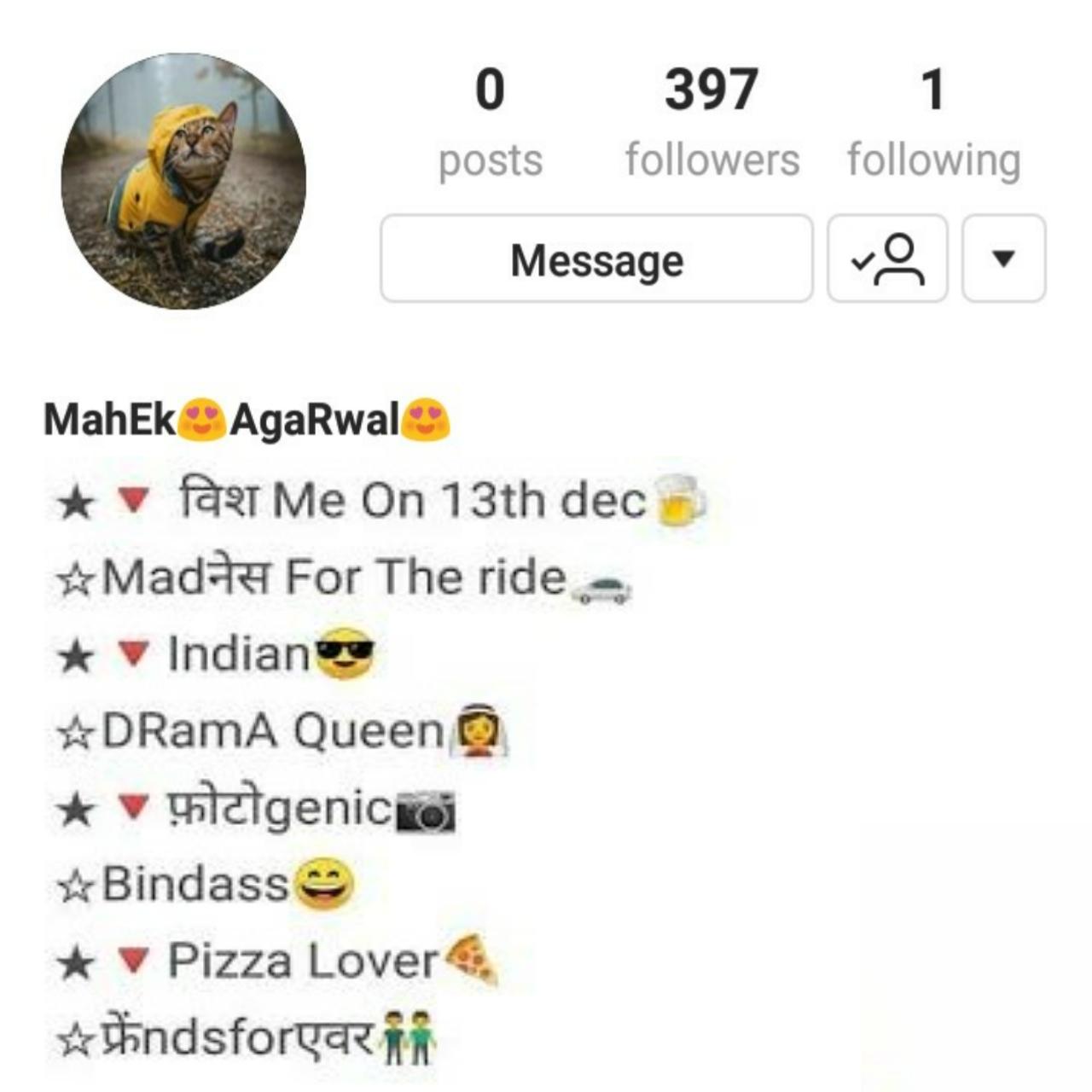 Top 20 Instagram bio in Punjabi | insta bio in punjabi | best