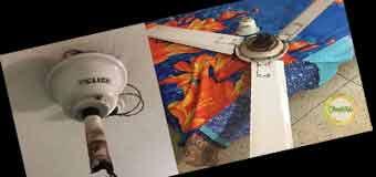 আরএফএল'র ফ্যান ভেঙ্গে আহত সন্তান, মামলা করছেন বাবা Image