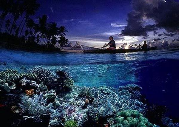 Wisata ke Taman Nasional Wakatobi, Sulawesi Tenggara