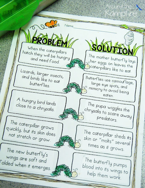 Butterfly life cycle problem solution activity