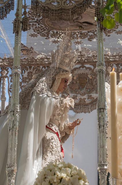 En el techo de palio de la Virgen de la Paz podemos ver una paloma bordada con una rama de oliva en su boca