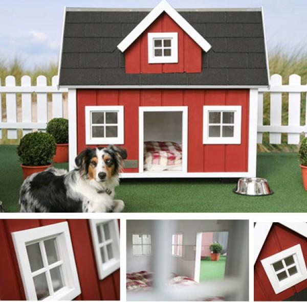 Home Design Ideas For Dogs: Cute Thing: Casa De Cachorro