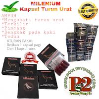poultryshop12