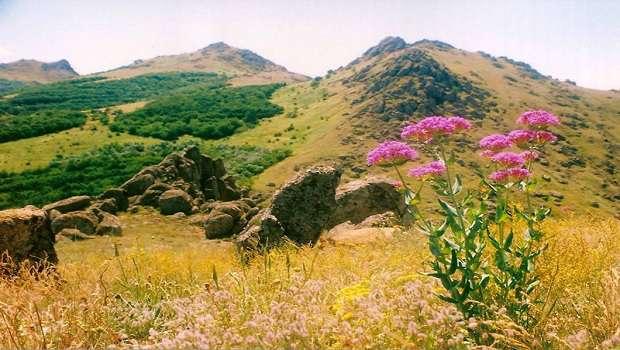 Poze, foto, imagini, Parcul Național Munții Măcinului, walpapers