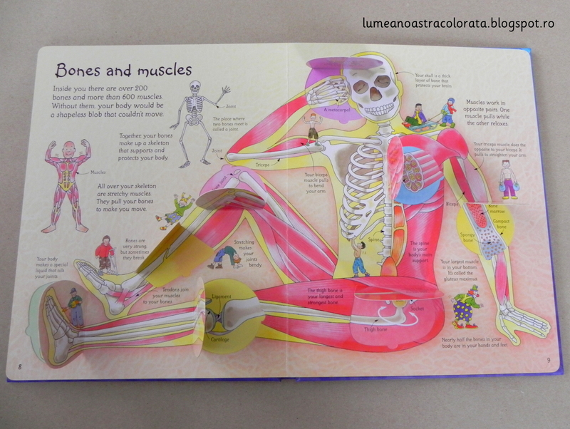 See inside your body, editura Usborne