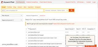 Alat Riset Kata Kunci Selain Google Keyword Planner Gratis
