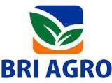 Lowongan Kerja BRI AGRO 2019