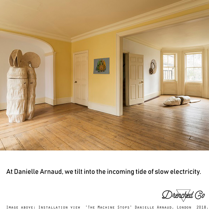 Image of Danielle Arnaud, London with art exhibition review by Drenched Co.
