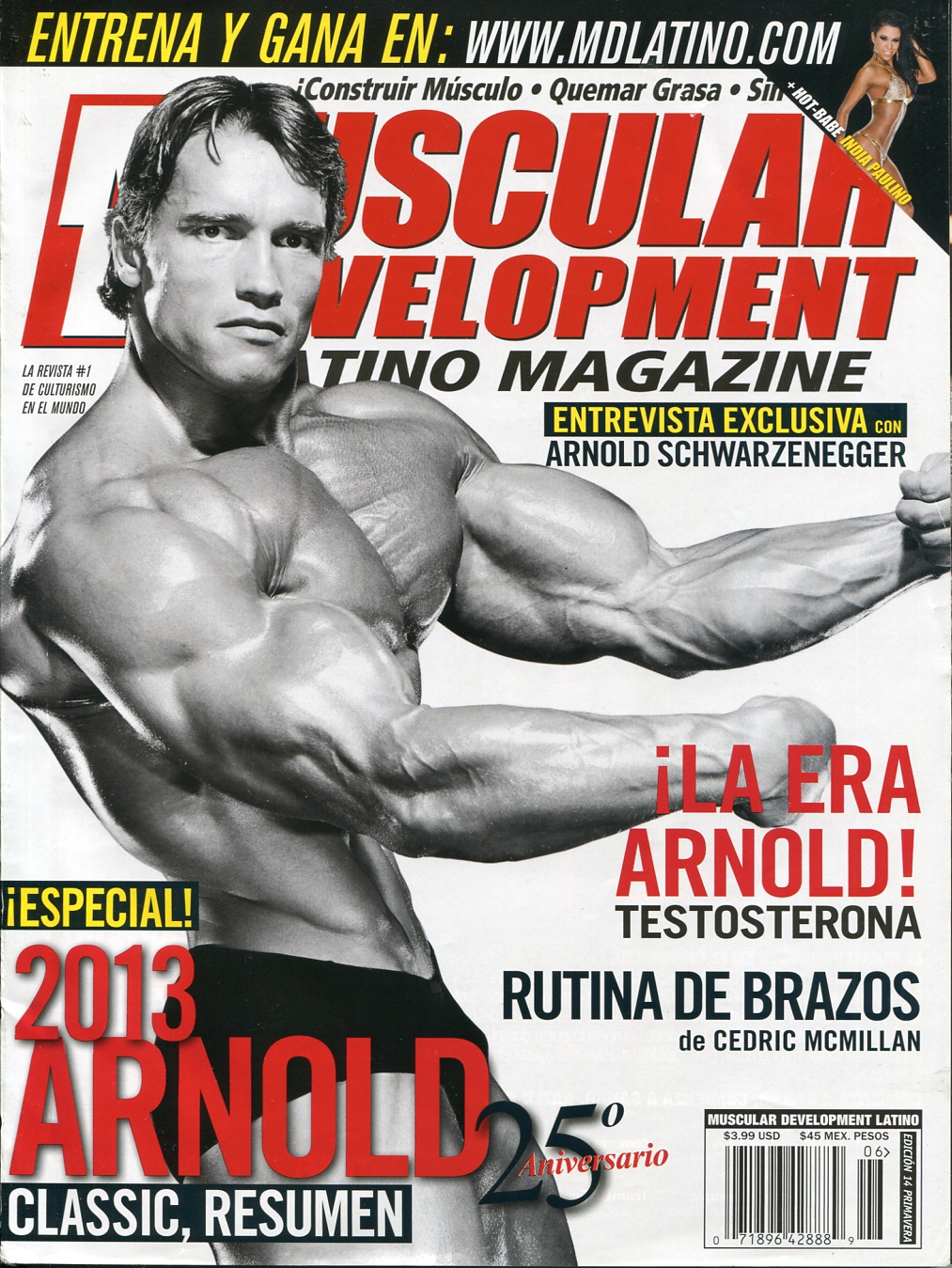 MUSCULAR DEVELOPMENT 2013 EPUB