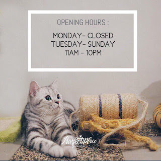 PURRFECT PLACE CAT CAFE & STUDIO, TAIPAN INANAM, fees PURRFECT PLACE CAT CAFE & STUDIO, TAIPAN INANAM,