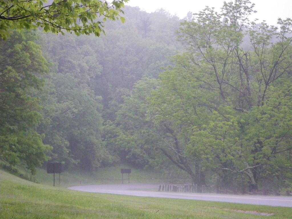 ~One Sweet Day~: Hujan dan ceritanya…