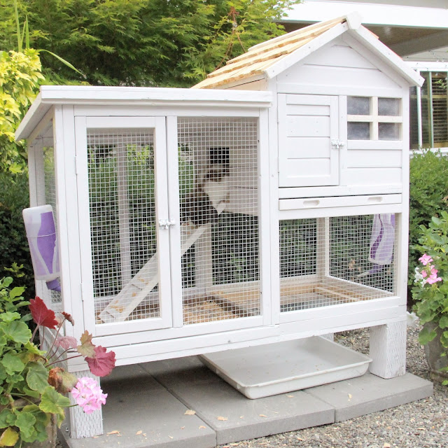 Fishtail Cottage Fishtail Cottage S New Rabbit Hutch
