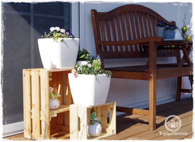 Gartenblog Topfgartenwelt Topfgarten + DIY mit Knagglig (Kiste) und Töpfen viel Platz auf kleinem Raum schaffen - Blumendeko mit Hornveilchen und Bellis passend für den Frühling und Ostern: mehr Platz zum Bepflanzen durch Kisten