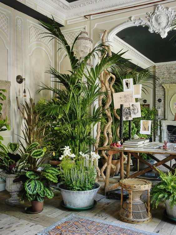 Moon to moon interior jungle Interior design plants inside house