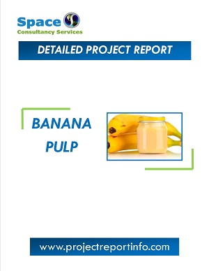 Banana Pulp Manufacturing Project Report