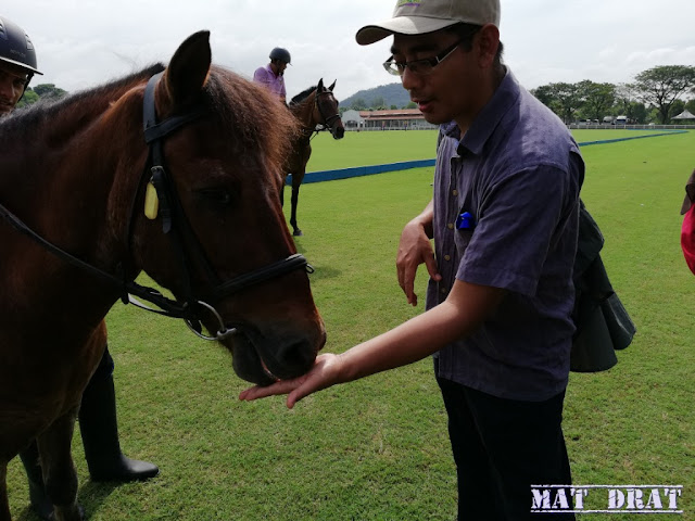 Taman Ekuestrian Putrajaya - Pengalaman Menunggang Kuda Horse Riding
